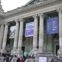 """Exhibition Grand Palais """"comparaisons"""" Paris, 2013."""