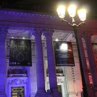 """Exhibition Grand Palais """"comparaisons"""" Paris, 2017"""