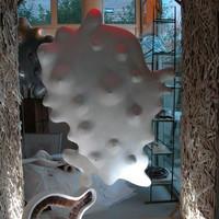 """vitrine blanche"" 2011"